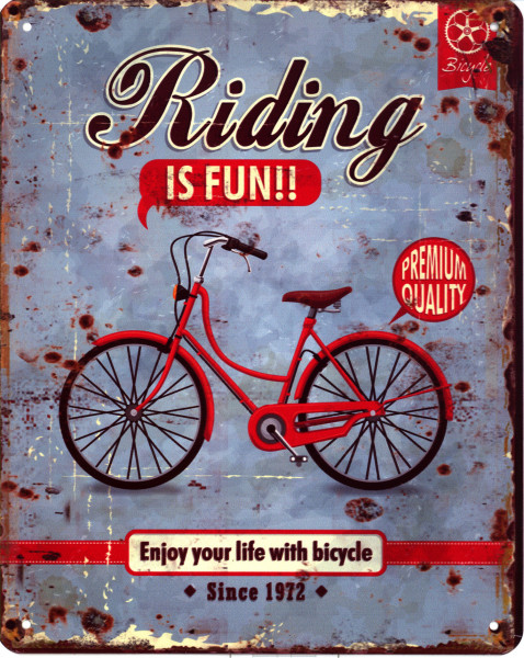 Blechschild 1038 Riding is fun Bicycle 20 x 25