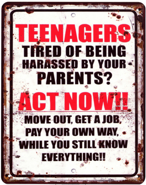 Blechschild 2428 Teenagers Act Now!! 20 x 25